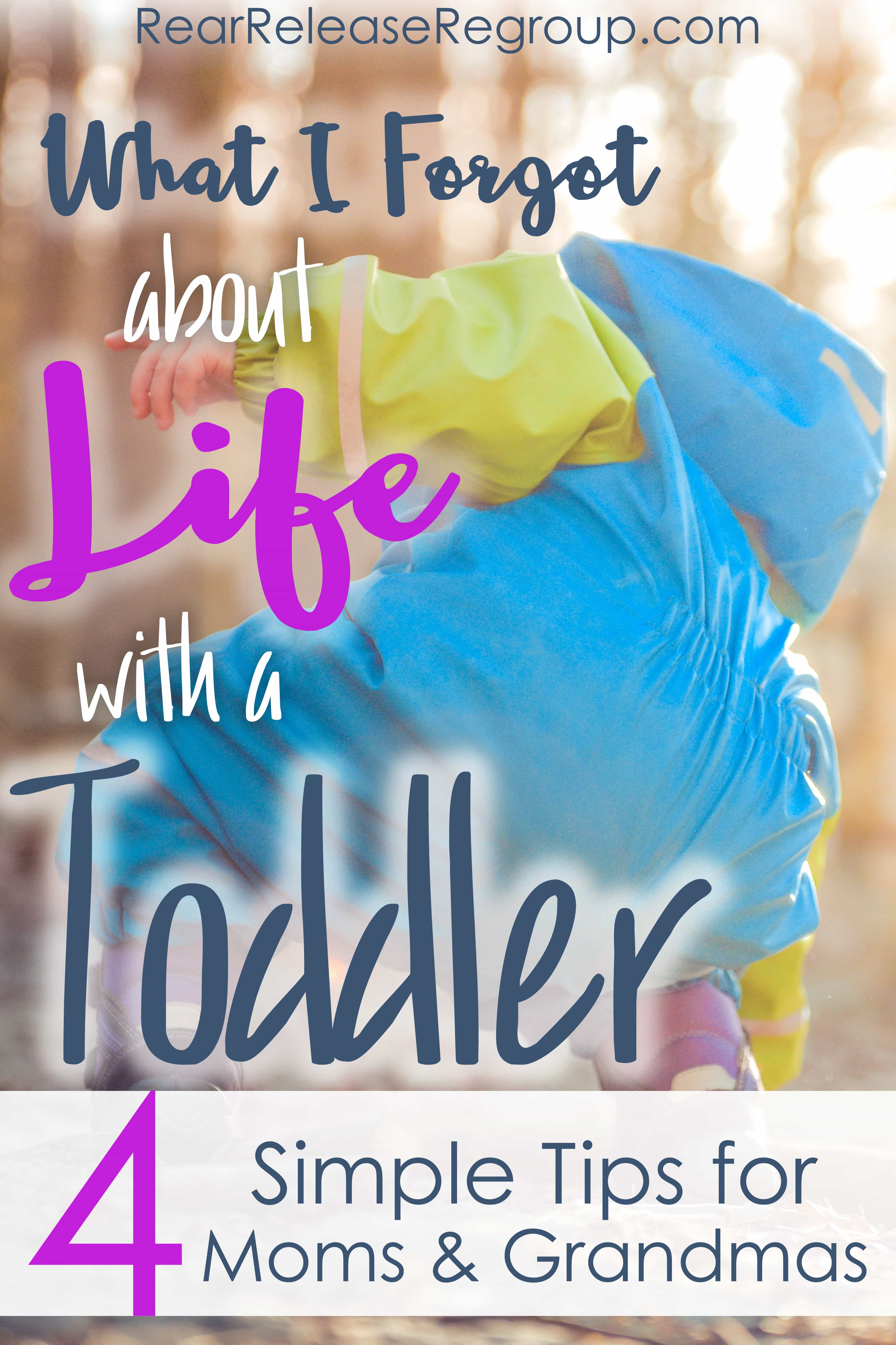 What I forgot about life with a toddler; 4 simple tips for moms and Gigis (like me) for coping and capturing the joy moments.