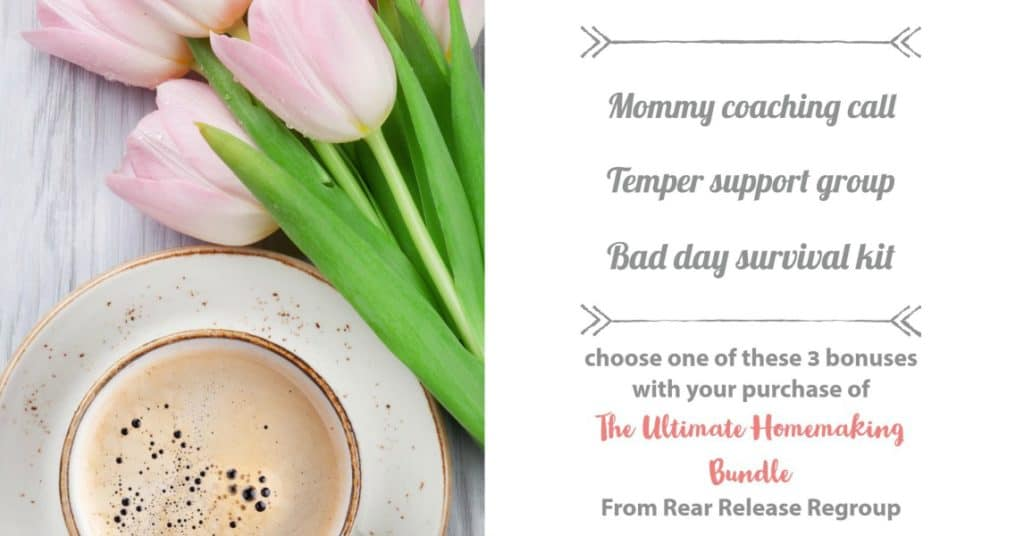 A Mommy Coaching Call; Temper Toolkit Masterclass; or Bad day mini-course survival kit!