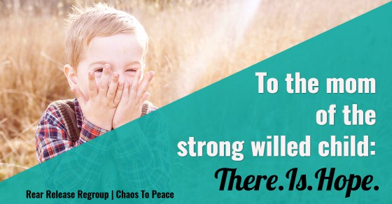 To the mom of the strong willed child: there is hope! 6 tips of perspective from a mom of 3 boys on heart issues for moms and children from God's view.
