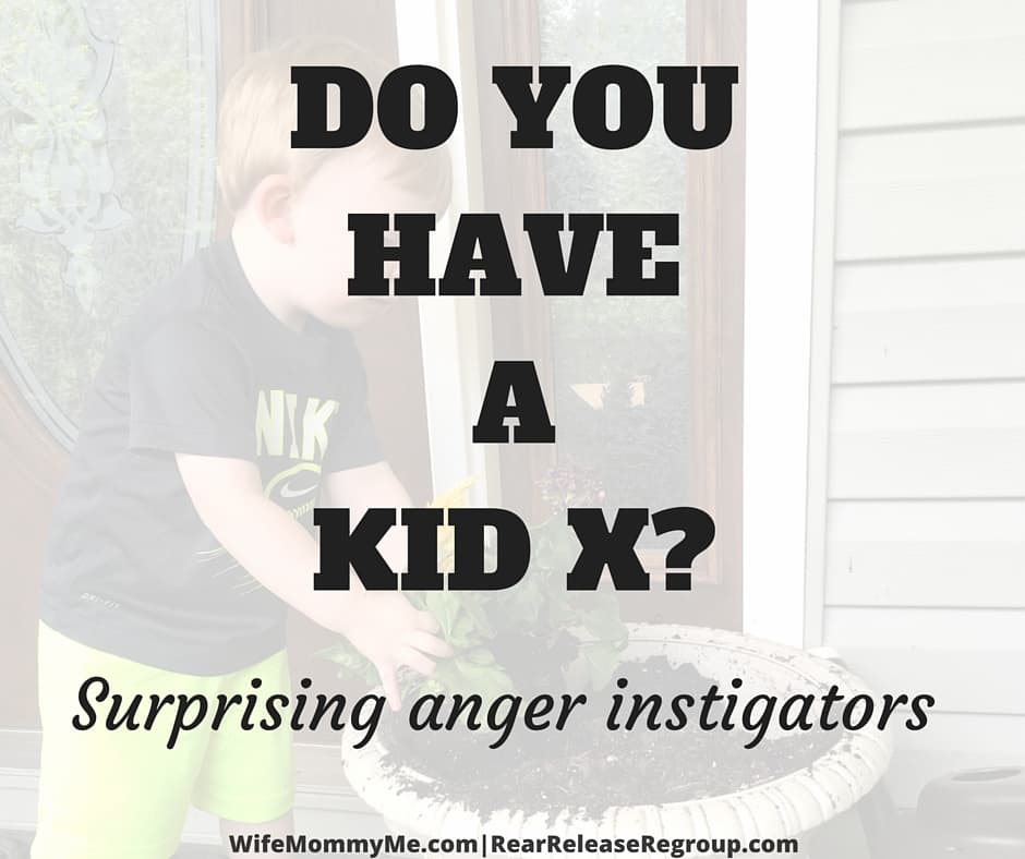 Do you have a KID X? Surprising underlying anger instigators that you may not realize are bringing you down. Learn to recognize these important signs by cultivating wisdom.