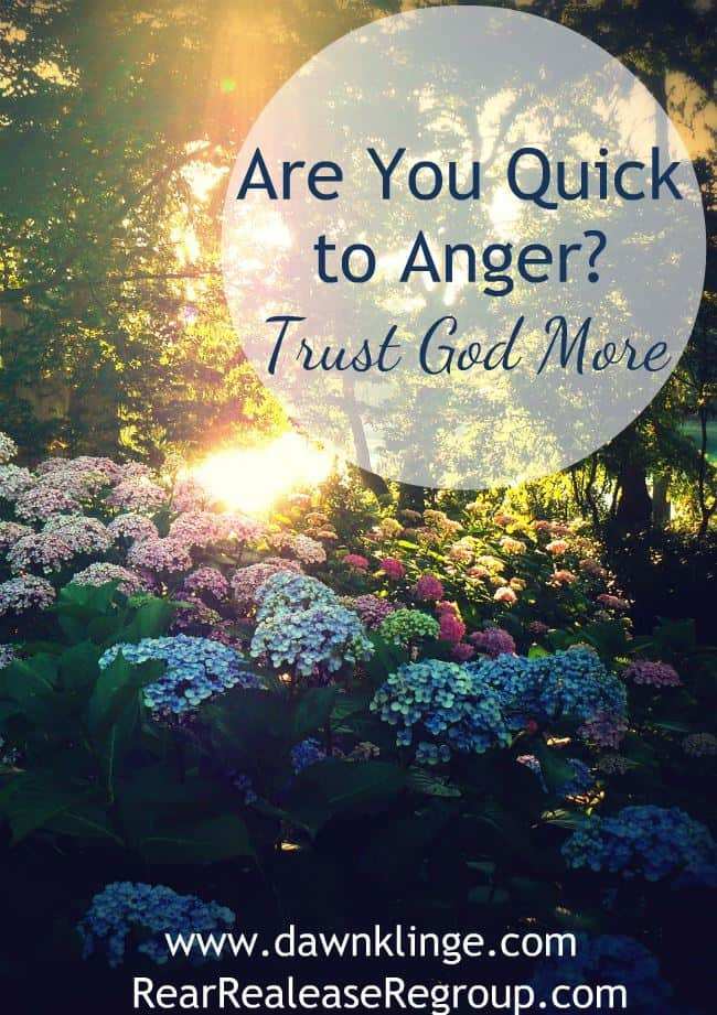 Are you quick to anger? Trust God more. Do your passions lead to outbursts of anger that you wish you could take back? These powerful truths give support!