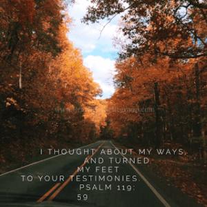 day 28 shower verse